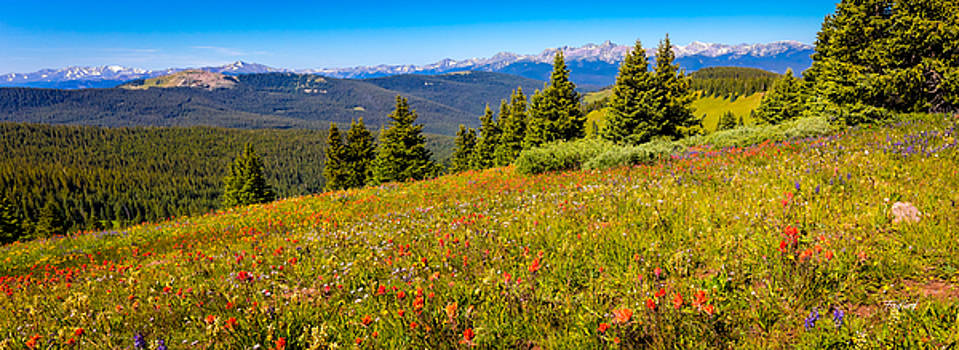 Shrine Ridge with View of Mt. of the Holy Cross Panorama by Fred J Lord