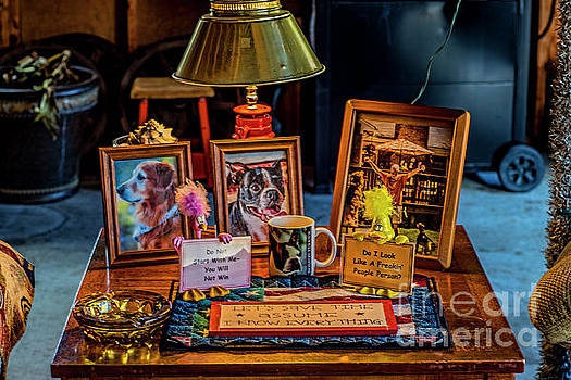 Shrine to the Dogs 2799T by Doug Berry