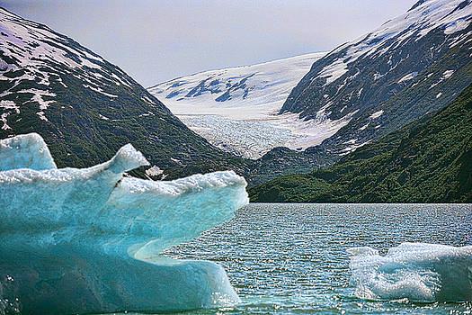 Chuck Kuhn - Shrinking Glacier