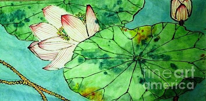 Shy lotus by Betty M M Wong