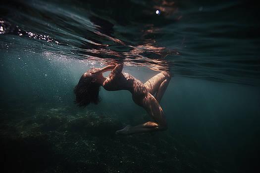 Shyness by Gemma Silvestre
