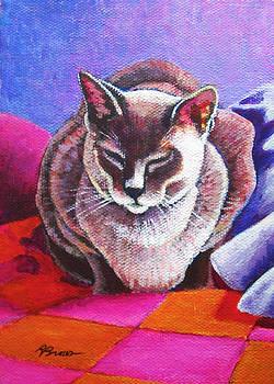 Siamese Cat on Patchwork Quilt by Rachel Armington