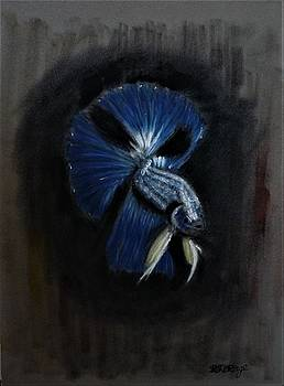 Richard Le Page - Siamese Fighting Fish 2