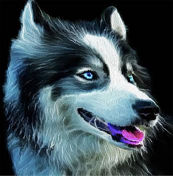 Siberian Husky 01 by Nixo by Nicholas Nixo