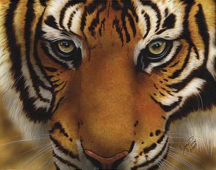 Siberian Tiger I by Wayne Pruse