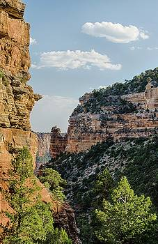 Side canyon view by Gaelyn Olmsted