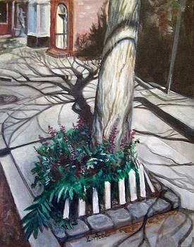 Laura Aceto - Sidewalk Shadows