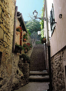 Siena Steps by Paul Barlo