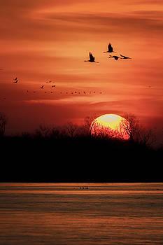 Susan Rissi Tregoning - Sienna Skies #2