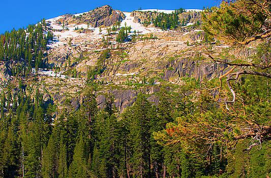 Sierra Mountainside I by Steven Ainsworth