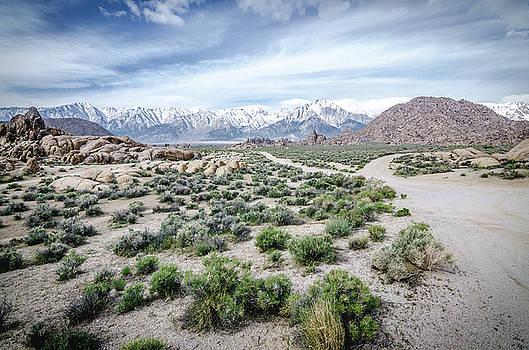 Margaret Pitcher - Sierra Nevada Front