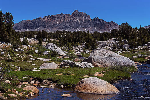Sierra Nevada Rocky Meadow by David Lunde