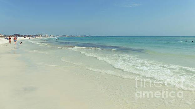 Edward Fielding - Siesta Key Beach Florida