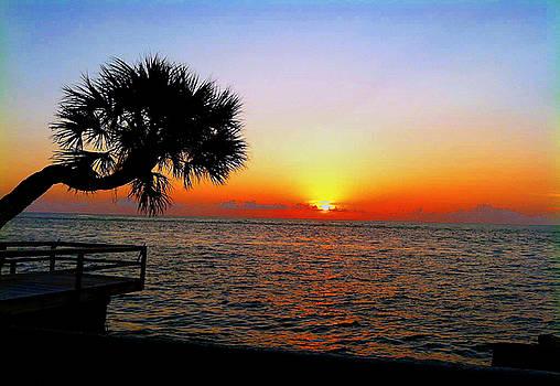 Siesta Key Sunset 2 by Dyana Jean