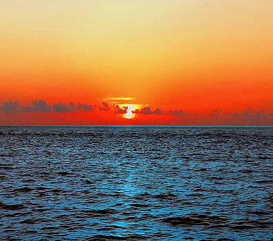 Siesta Key Sunset 3 by Dyana Jean