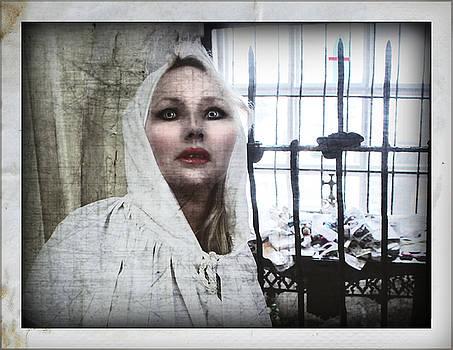 Iron Gates by Karen StClaire