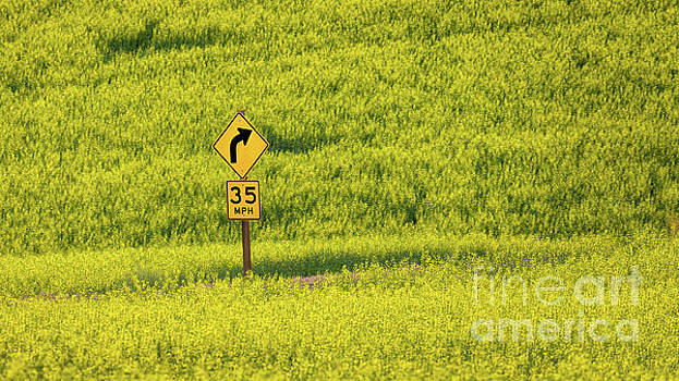 Sign in Canola Field by Jerry Fornarotto