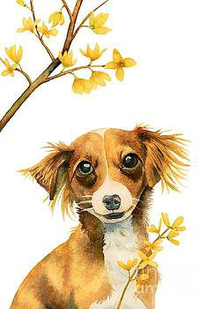 Signs of Spring - Cute Dog with Forsythia Watercolor Painting by NamiBear