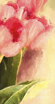 Signs of Spring by Pam  Holdsworth