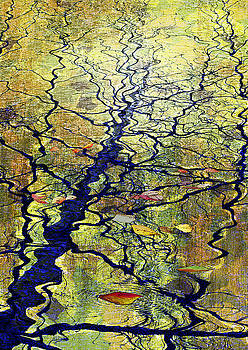 Silence and Water surface 2005 by Haruo Obana