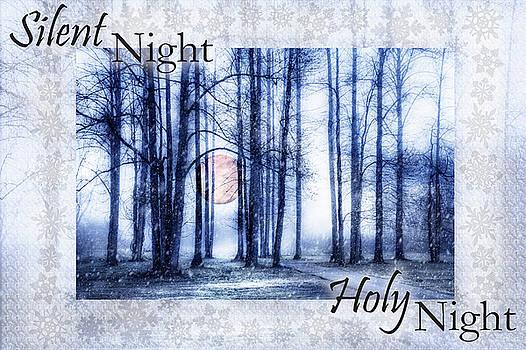 Debra and Dave Vanderlaan - Silent Night Holy Night II