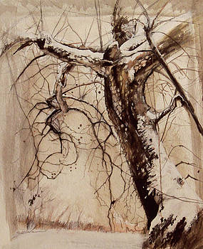 Silent Pasture by Susie Gordon