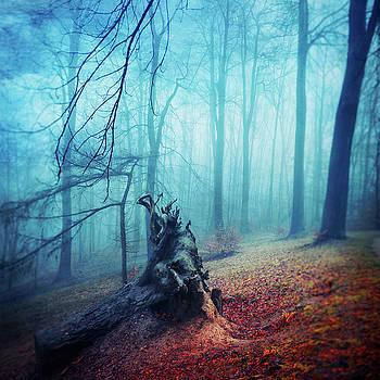 Silent Sadness by Dirk Wuestenhagen