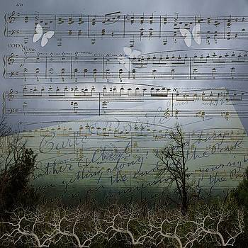 Silent Song by Nadine Berg