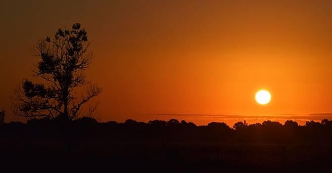 Silent Sunrise by John Glass