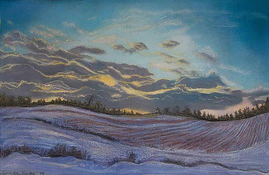 Silent Symphony by Lucinda  Hansen