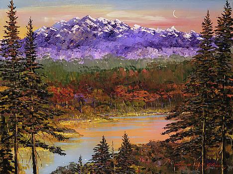 Silent Vision by David Lloyd Glover