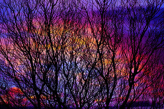 Silhouette 2 by Paul Marto