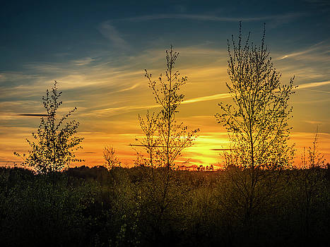 Silhouette by Sunset by Nick Bywater