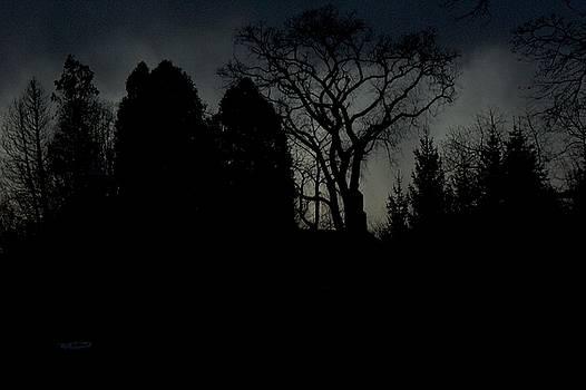 Silhouette by KC Moffatt