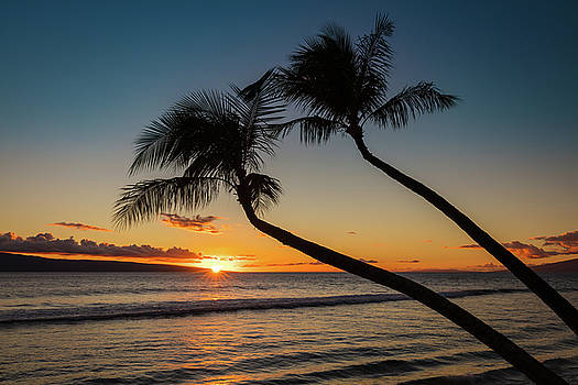 Silhouette of the Tropics by Pierre Leclerc Photography