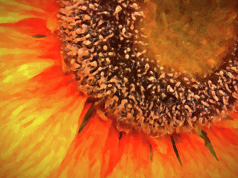 Silk Sunflower by SR Green