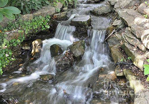 Silky Waterfall at Cheekwood by Wanda-Lynn Searles