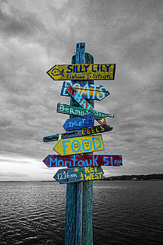 Silly Lily Fishing Station Sign by Robert Seifert