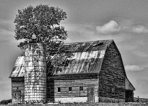 Kristie  Bonnewell - Silo Tree Black and White