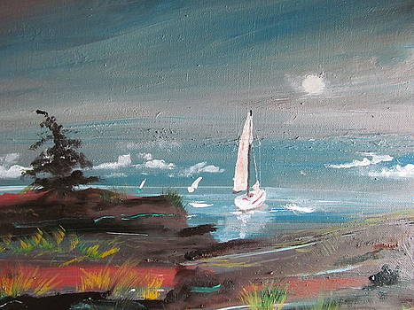Silva Bay by Susan Snow Voidets