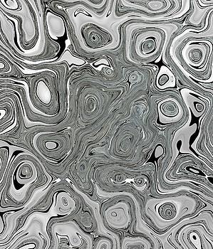 Silver Abstract by Lynda Payton