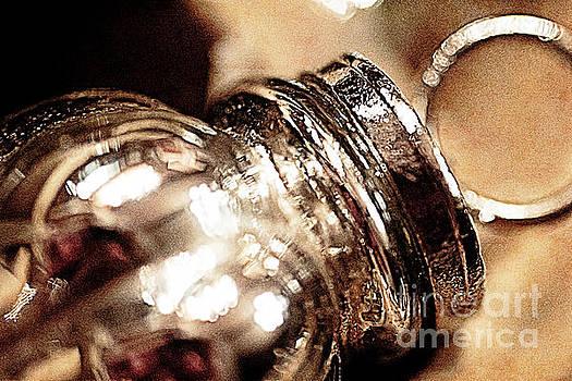 Silver Antique Glass Ornament by Pamela Moran