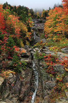 Silver Cascade Falls Crawford Notch State Park by Dan Sproul
