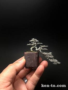 Silver cascade wire bonsai tree by Ken To by Ken To