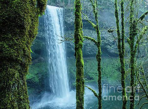 Silver Creek Falls ... Oregon by Nick Boren