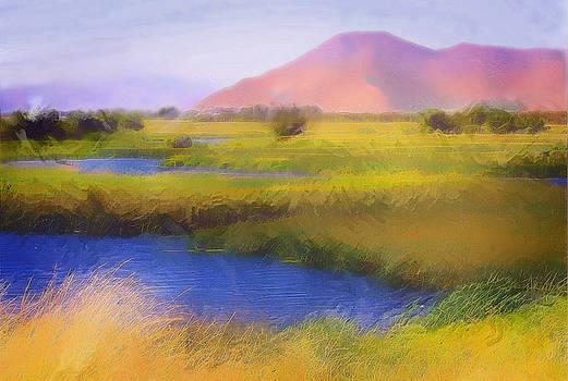 Silver Creek Preserve by Amy G Taylor