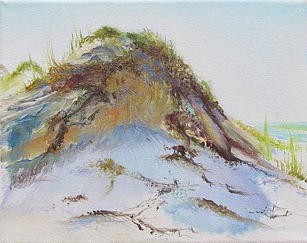 Silver Dune by Jill Holt