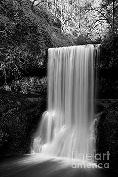 Adam Jewell - Silver Falls Lower South Black And White