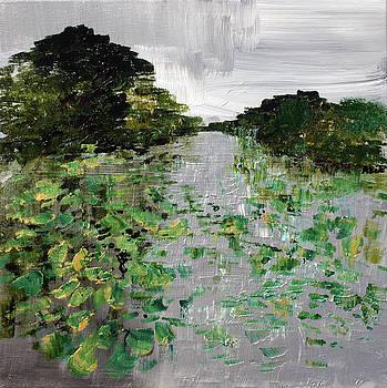 Silver Lake Norfolk Botanical Garden 2018-17 by Alyse Radenovic