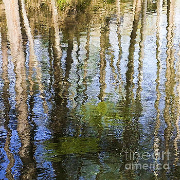 Silver Lake Reflections by Barbara Youngleson